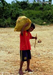 adik 'Minggu' pergi ke pasar membawa daun singkong