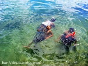 Snorkling di pantai Tual